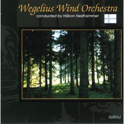 Wegelius Wind Orchestra_1695